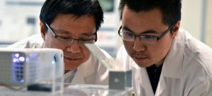 Assist. Prof. Keekyoung Kim (left) examines a tissue sample with UBC research student Zongjie Wang.