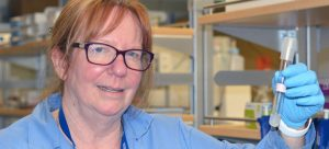 UBC identifies bacteria linked to acid produced at mining sites